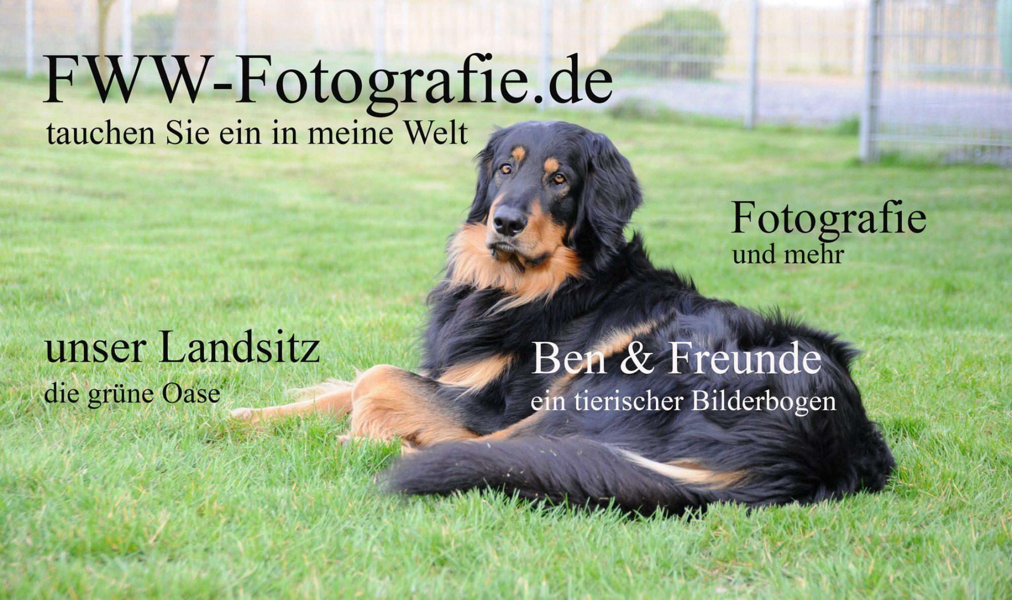 FWW-Fotografie
